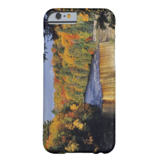 Upper Tahquamenon Falls in UP Michigan in autumn Barely There iPhone 6 Case