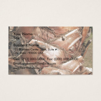 Upper Trunk of Palm Tree Business Card
