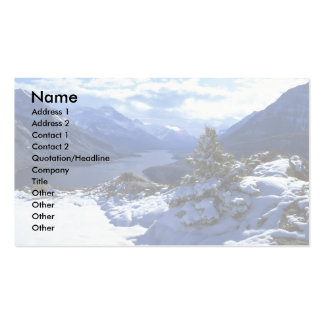 Upper Waterton Lake, Waterton Lakes National Park, Double-Sided Standard Business Cards (Pack Of 100)