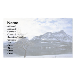 Upper Watertown Lake, Watertown Lakes Nat'l Park, Double-Sided Standard Business Cards (Pack Of 100)