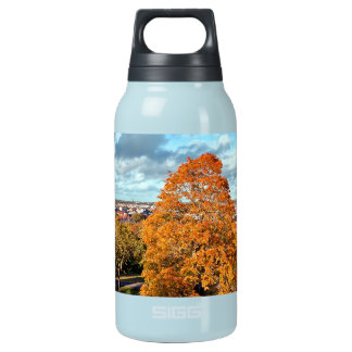 Uppsala Sweden Fall Scenic Picture Insulated Water Bottle