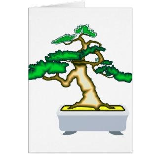 Upright Bonsai Sumo in Grey Pot Graphic Image Card