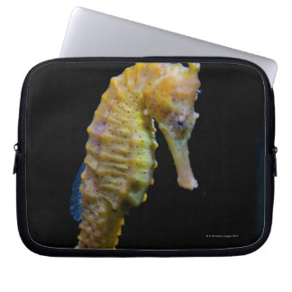 upright swimmerequine shapeprehensile taillong laptop sleeve
