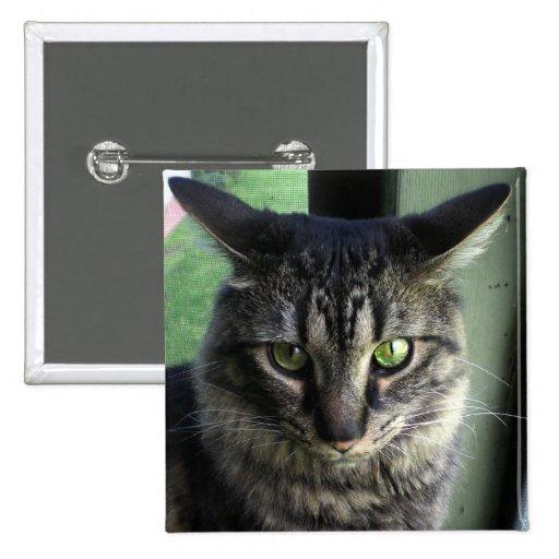 Upset Cat 2 Inch Square Button