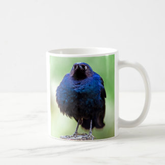 Upset Starling Coffee Mug