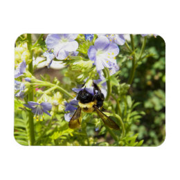 Upside Down Bumble Bee Magnet