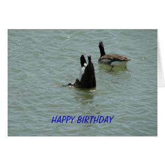 Upside Down Goose, Birthday Card