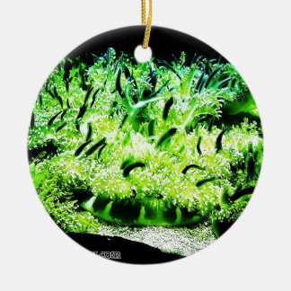 Upside Down Jellyfish / Cassiopea Double-Sided Ceramic Round Christmas Ornament