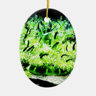 Upside Down Jellyfish / Cassiopea Double-Sided Oval Ceramic Christmas Ornament