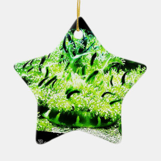 Upside Down Jellyfish / Cassiopea Double-Sided Star Ceramic Christmas Ornament