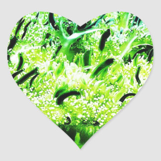 Upside Down Jellyfish / Cassiopea Heart Sticker