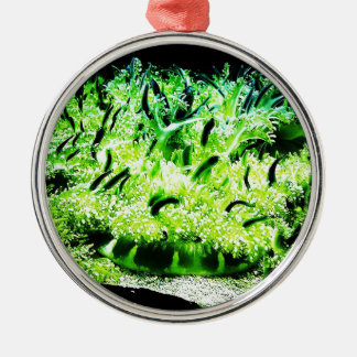 Upside Down Jellyfish / Cassiopea Round Metal Christmas Ornament
