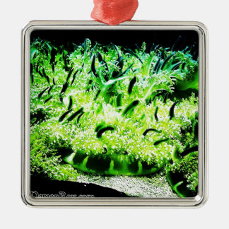 Upside Down Jellyfish / Cassiopea Square Metal Christmas Ornament