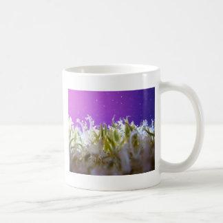 Upside Down Jellyfish Classic White Coffee Mug