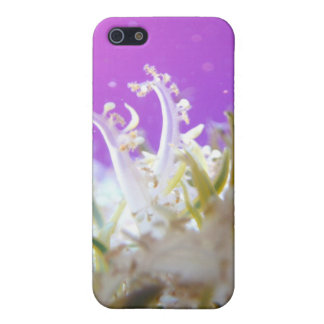 Upside Down Jellyfish iPhone SE/5/5s Cover