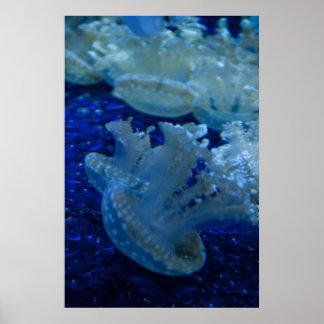"""Upside Down Jellyfish"" Poster Print"