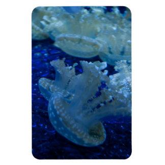 Upside Down Jellyfish Premium Flexi Magnet