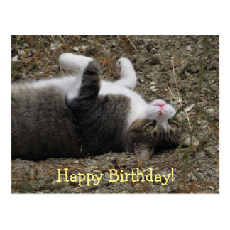 Upside Down Kitty Birthday Postcard