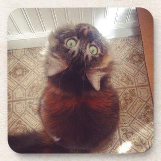 Upside-down Kitty Cat Drink Coaster