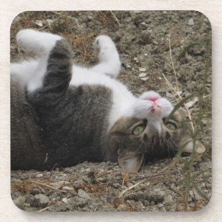 Upside Down Kitty Coasters