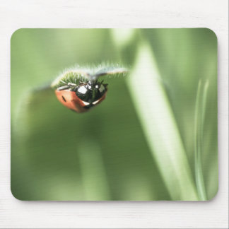 Upside down Ladybird Mouse Pad
