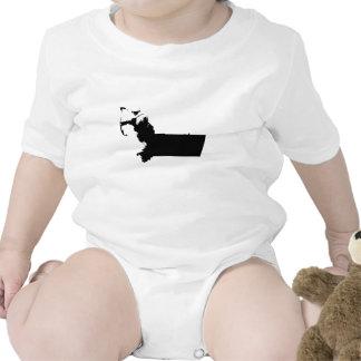 Upside Down Map of Massachusetts Baby Bodysuits