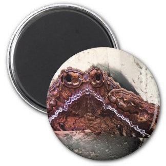 Upside down moth magnet