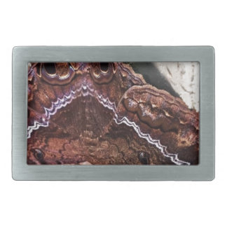 Upside down moth rectangular belt buckle