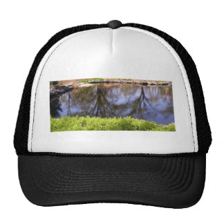 upside down pond reflection hats