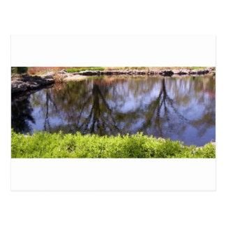 upside down pond reflection postcard