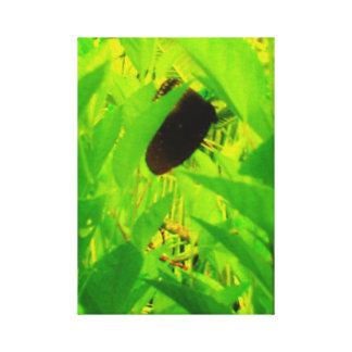 Upsidedown Butterfly Canvas Print