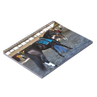 Upstart - Pennsylvania Derby Notebook