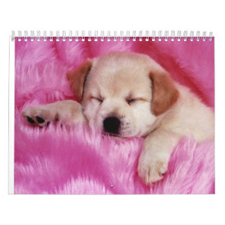Ur Calender Calendar