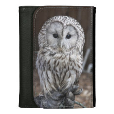 Ural Owl Leather Wallets at Zazzle