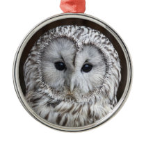 Ural Owl Metal Ornament