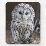 Ural Owl Mousepads