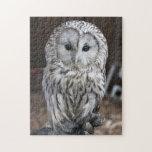 Ural Owl Puzzle