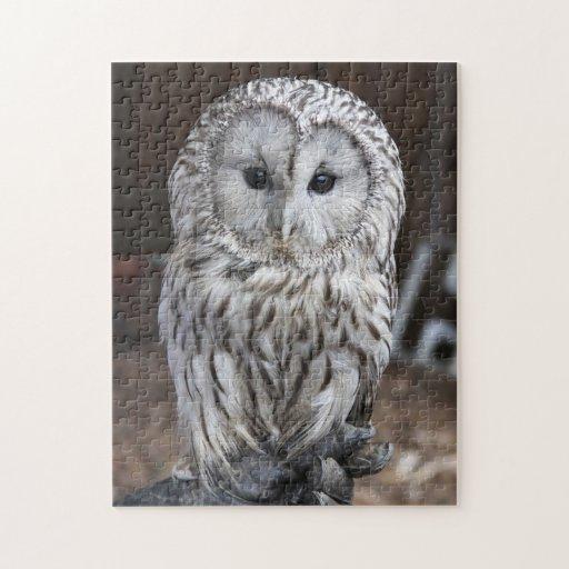 Ural Owl Jigsaw Puzzles