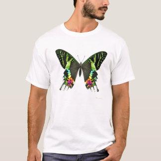Urania Sunset Moth T-Shirt