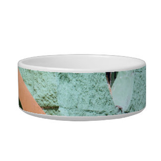 Urban architecture in green color bowl