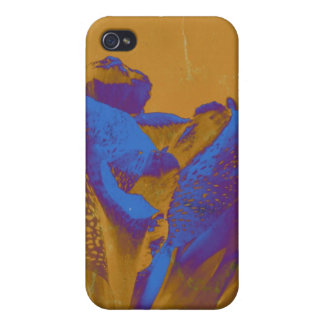 Urban Blues iPhone 4/4S Cases
