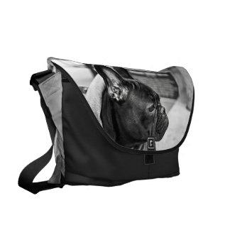 Urban bulldog courier bag