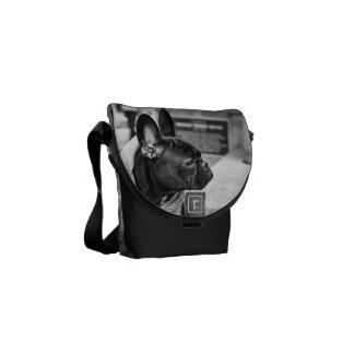 Urban bulldog messenger bags
