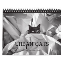 Urban Cats Black and White Photography Calendar