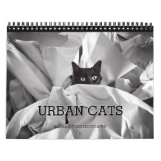 Urban Cats Black And White Photography Calendar at Zazzle