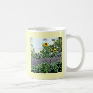 Urban Farming Mammoth Sunflowers Bean Plants Fence Coffee Mug