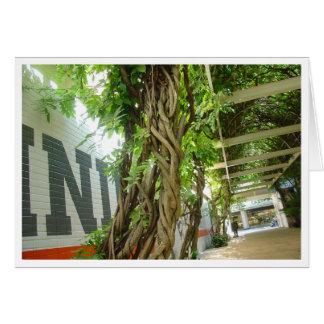 Urban Jungle Card