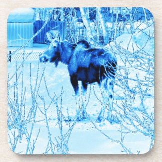 Urban Moose Beverage Coaster