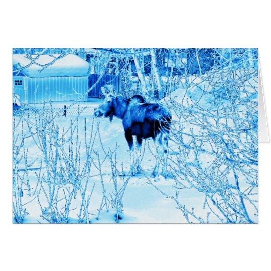 Urban Moose Card