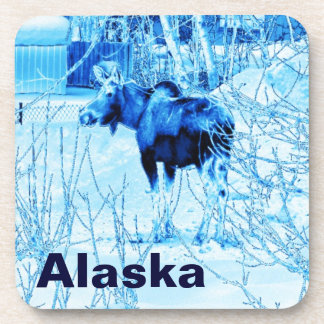 Urban Moose Coaster